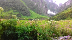 Valley of Flowers and Hemkund Sahib with a backpack