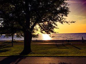 Gotland in the summer