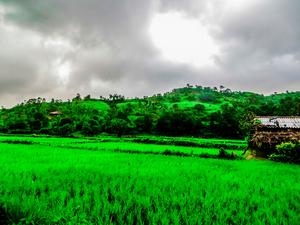 Trek to Highest peak of Maharashtra - Kalsubai