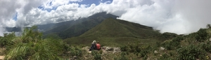 Bittersweet Escapade to Kodai-Palani Hills