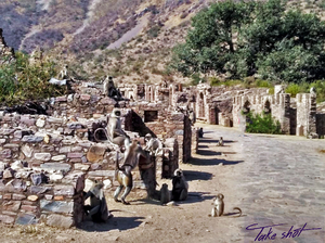 Drive to Bhangarh – A story with ghosts