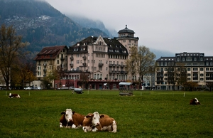 Solo Trip to Interlaken