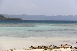 This is why I will visit Andamans again.