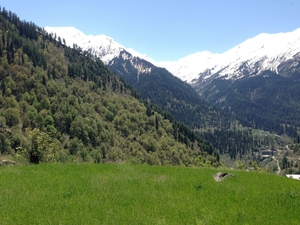 Tosh: The jewel of Himachal Pradesh