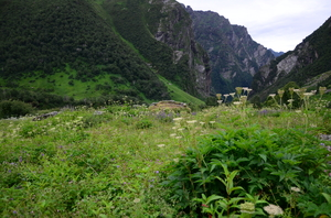 The Valley of Flowers and Hemkund Sahib Trek: A revitalizing experience
