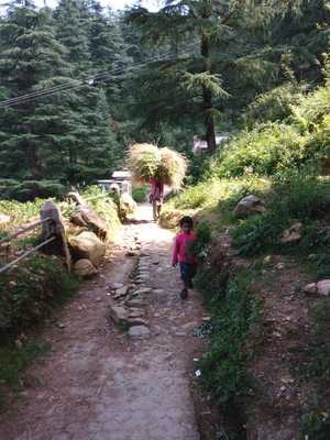 Backpackers in Uttarakhand!!
