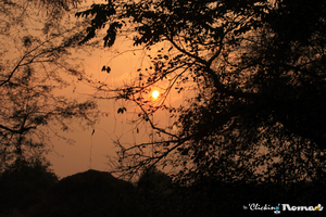 Bharatpur - a birders' paradise