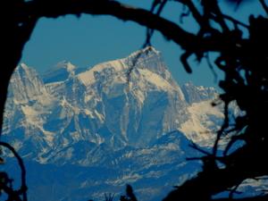 Trek to Nag Tibba - The serpent's peak