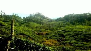 Munnar - Darjeeling of the south