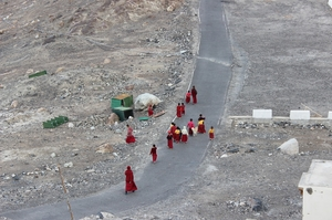 Leh Ladakh - The Monastery Circuit