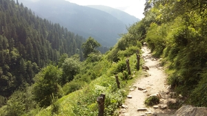 All you need to know about Kheerganga Trekk