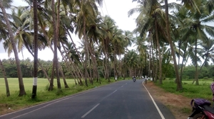 Solo Ride To Goan Gateway- Majorda
