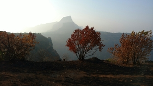 Tail Baila - A perfect camping spot near Lonavala