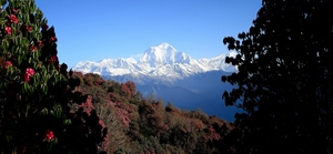 The famous Poon Hill Trek: Nepal