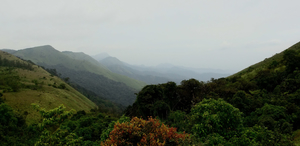 A trek up the highest peak in Coorg: Tadiandamol!