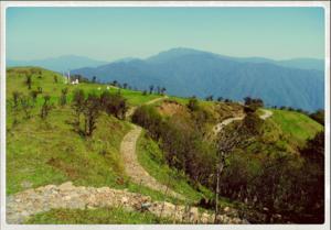 Trekking for the sun: Singalila Ranges
