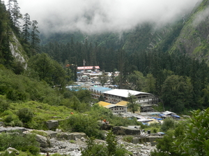 Valley that blossoms in the Himalayas - The Valley of Flowers National Park And Hemkund Sahib