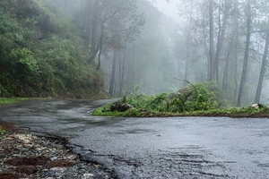 Chail-Koti-Shimla!