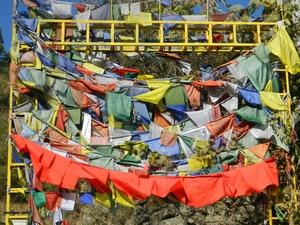 A single day out at Riwalsar (Himachal pradesh )