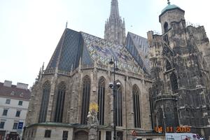 The Vienna Story