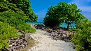 Maldives - The diver's paradise