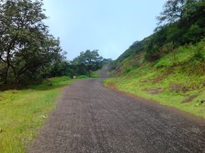 A day's trip to Saputara