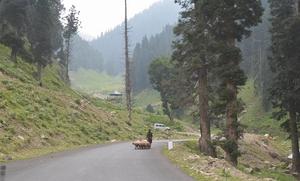 Kashmir , By chance!!
