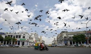 Experience Delhi - The Heart of Delhi