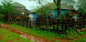 A monsoon day in Agumbe