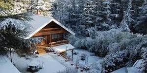 A white christmas @ The Chalet Naldhera, Himachal Pradesh
