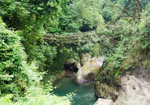 Nongriat – A Meghalayan Village Trip