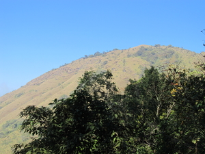 Chikmagalur Chills