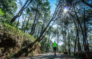 Get Ready For The Hell Race: The Ultimate Himalayan Test for Your Endurance in Bir-Billing