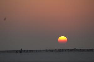 Road Trip - Rann Of Kutch - Jaisalmer