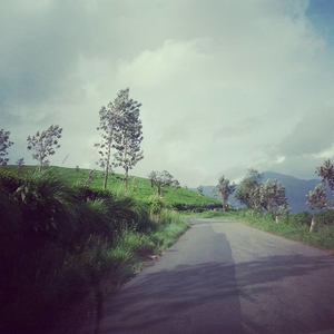 God's own country – Kerala tales!