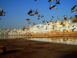 Ajmer & Pushkar - Getting Painted in the Spiritual