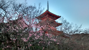 Tales from Japan – Kyoto