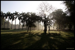 My Perfect Day in Lutyen's Delhi
