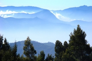 Ooty: Queen of Hill Stations