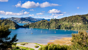 New Zealand Adventure: Best of South Island