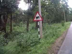 Kottiyoor Ride