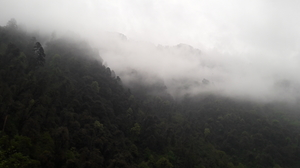 Magical State Of North Sikkim!