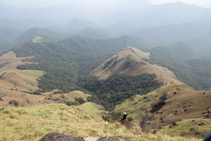 Tadiandamol - The Highest Peak in Kodagu !