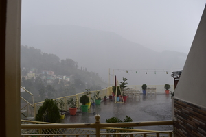 Why Does Everyone Want to Be in McLeodGanj This Summer?
