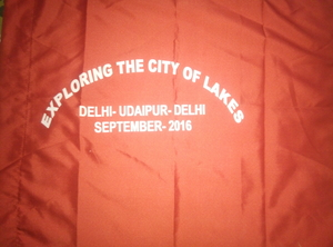 Exploring the city of lakes...Bike ride delhi--udaipur--chittorgarh---delhi