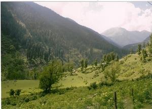 In and around Srinagar - heaven on Earth