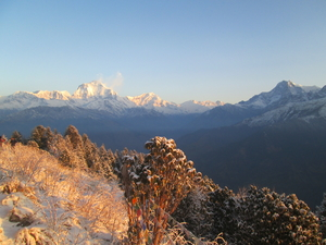 Ghorepani Poon Hill Trek - Journey of Your Lifetime