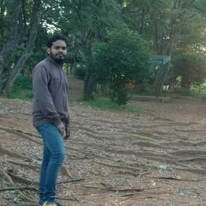 Nikhil S R Travel Blogger