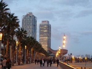 Barcelona: A guide to my favorite places