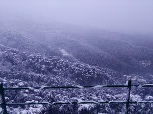Snowing shimla....